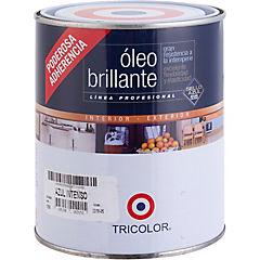 Óleo Profesional Brillante 1/4 galón Azul Intenso