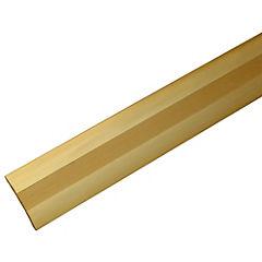 Cubrejunta adhesiva con tornillos 1 mt Oro