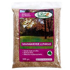 Semillas prado Manquehue con trébol 500 gramos