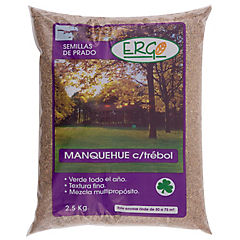 Semilla Prado Manquehue C/ Trébol Ergo 2.5 kg