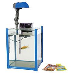 Kit de acuario con lampara y filtro 19 litros