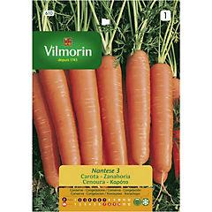 Semilla hortaliza zanahoria nantesa