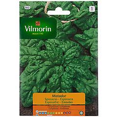 Semillas Brócoli 5 gramos