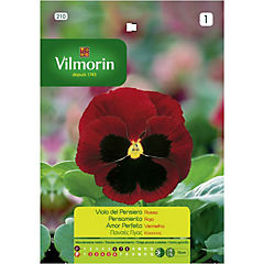 Semilla flor pensamiento rojo 5 gr sachet