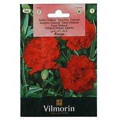 Semilla flor clavel chabaud rojo 5 gr sachet