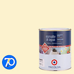 Esmalte al agua satinado 1/4 gl Damasco