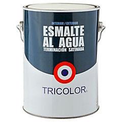 Esmalte al Agua Satinado 1 galón Rojo Colonial