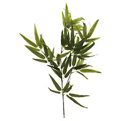 Vara Bambú