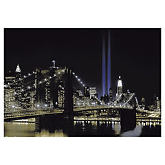 Papel fotomural New York 254x366 cm