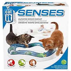 Circuito luminoso para gatos