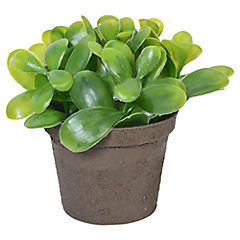 Planta artificial 14 cm con macetero