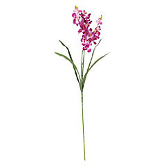 Vara Orquídea purpura