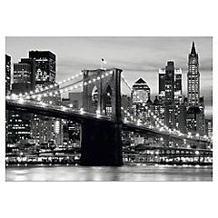 Fotomural Puente Brooklin Blanco/Negro