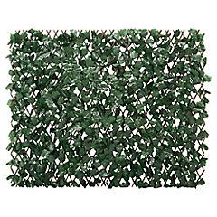 Palmeta hiedra bamboo 100x200 cm