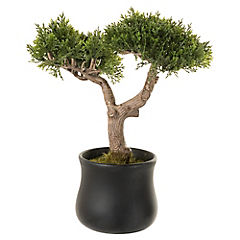 Bonsái cedro artificial 25,4 cm con macetero