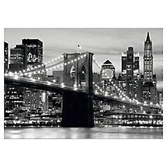 Fotomural Puente Brooklin