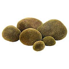 Piedras de Musgo Decorativas
