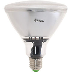 Ampolleta Led Par38 12W E27