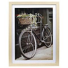 Cuadro bici cesto 50x66 cm