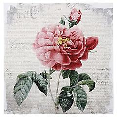 Canvas 40x40 cm Peonia