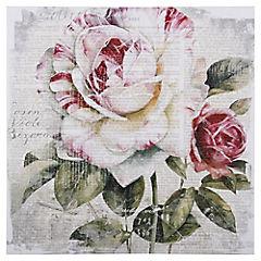 Canvas 40x40 cm Rosa
