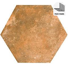 Porcelanato 33x28,5 Memphis Hexagonal marrón
