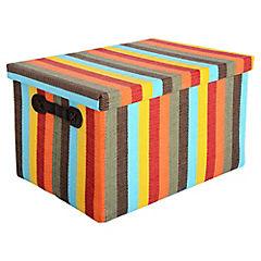 Caja organizadora con tapa 36x26x22 cm raya color