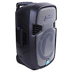 Parlante karaoke 50W