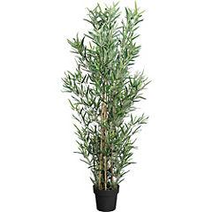 Mini bambú 150 cm