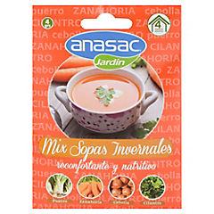 Semillas mix sopa invierno