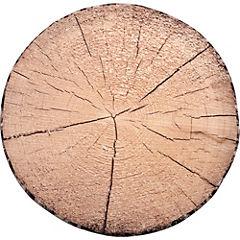 Cojín silla tronco A 40 cm