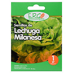 Semilla lechuga milanesa 1 gr sachet