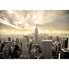 Fotomural Manhattan-216 200x280