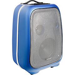 Parlante karaoke bts600k bowmann