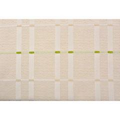Cortina Stripes pistacho 140x230 cm