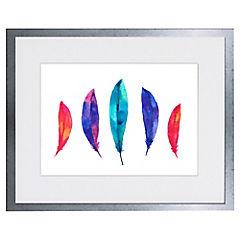 Cuadro Feathers 28x34 cm