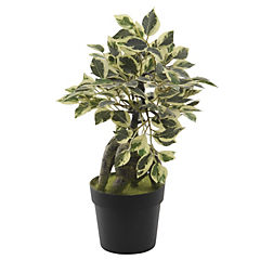Planta artificial mini Ficus 20x29 cm