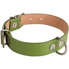 Collar de suela de 50 x 2,5 cm, color verde