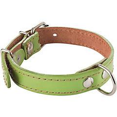 Collar para perro 40x2 cm de suela Verde