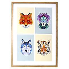 Lámina enmarcada 70x50 cm Animals I
