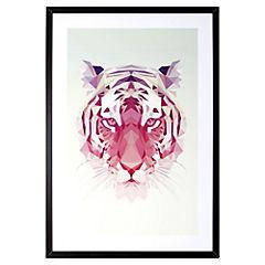 Lámina enmarcada 70x50 cm Tiger blanco