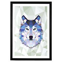 Lámina enmarcada 50x35 cm Blue Wolf negro