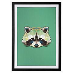 Lamina con marco 50x35 cm Raccoon Madera