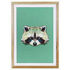 Lámina enmarcada 50x35 cm Raccoon Madera