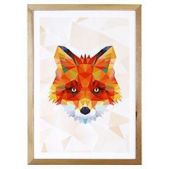 Lámina enmarcada 50x35 cm Fox