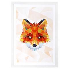 Lámina enmarcada 50x35 cm Fox blanco