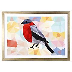 Lámina enmarcada 50x35 cm Red bird blanco