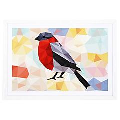 Lamina con marco 50x35 cm Red bird Blanco