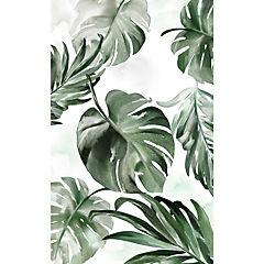 Cuadro Hojas Tropicales 1 94x64 cm
