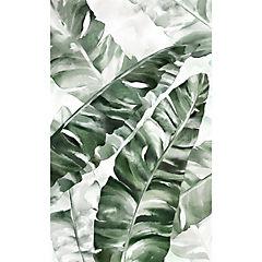 Cuadro Hojas Tropicales 2 94x64 cm